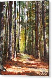 Great Brook Farm Summer Path Acrylic Print