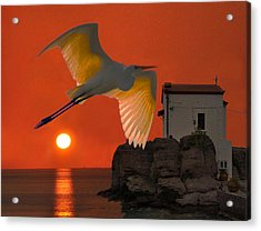 Acrylic Print featuring the mixed media Great Egret Sunset In Skala by Eric Kempson