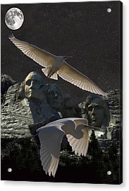 Great Egrets Mount Rushmore  Acrylic Print by Eric Kempson