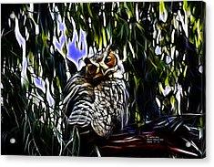 Great Horned Owl - 4228 - Fractal - S Acrylic Print