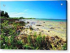 Great Lakes Summer Shoreline Acrylic Print by Janice Adomeit
