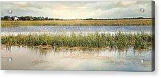 Great Marsh Acrylic Print by Karen Lynch