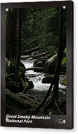 Great Smoky Mountains Np 004 Acrylic Print by Charles Fox