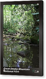 Great Smoky Mountains Np 011 Acrylic Print by Charles Fox