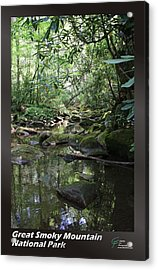 Great Smoky Mountains Np 012 Acrylic Print by Charles Fox
