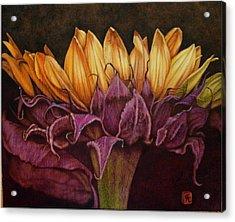 Great Sunflower Acrylic Print by Cynthia Adams