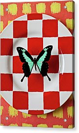 Green And Black Butterfly On Red Checker Plate Acrylic Print by Garry Gay