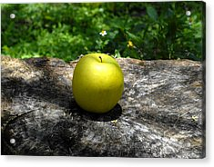 Green Apple Acrylic Print by David Lee Thompson