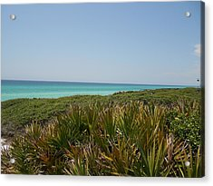 Green Beach Acrylic Print by Craig Keller