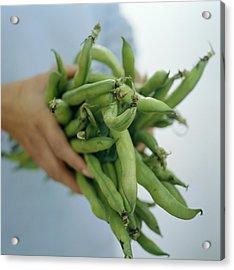Green Beans Acrylic Print by David Munns