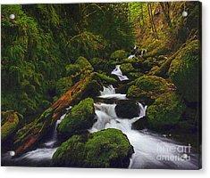 Green Canyon Cascades Acrylic Print by Diane Kurtz