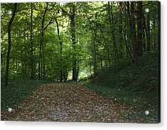 Green Cemetery Road Acrylic Print by James Collier