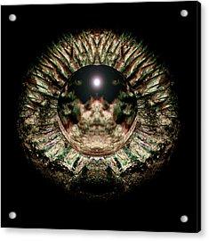 Green Eye Sphere Acrylic Print by David Kleinsasser