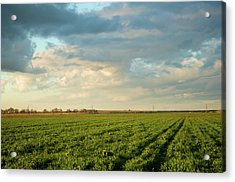 Green Field With Clouds Acrylic Print by Topher Simon photography