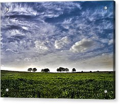Green Fields And Blue Sky Acrylic Print by Meir Ezrachi
