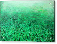 Green Grass Acrylic Print