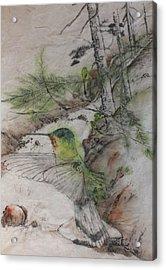 Green Hummer On Cedar Ridge Rd Acrylic Print