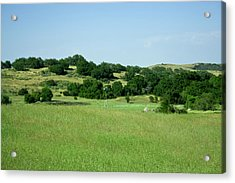 Green Meadow Acrylic Print by Terry Thomas
