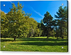 Green Oasis Acrylic Print by Stavros Argyropoulos