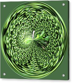 Green Orb Acrylic Print by Sandi Blood