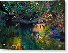 Green Reflections Acrylic Print