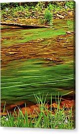 Green River Acrylic Print by Elena Elisseeva