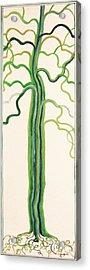 Green Sap Acrylic Print by Alain Guiguet