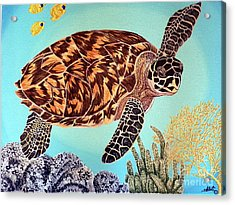 Green Seaturtle 1 Acrylic Print by Nanci Fielder
