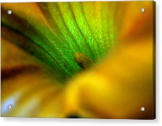 Greener On The Other Side Acrylic Print by Wanda Brandon