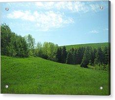 Greener Pastures Acrylic Print by Harry Wojahn