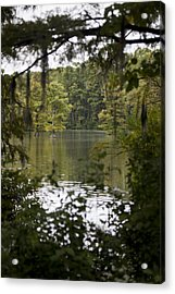 Greenfield Lake Acrylic Print by Christina Durity