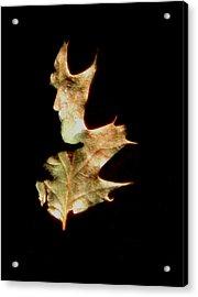Greenman Acrylic Print by Arla Patch