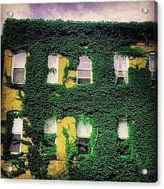 Greenvasion Acrylic Print