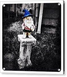 Greenville's Garden Gnome Acrylic Print