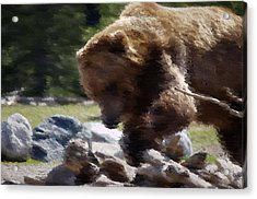 Grizz Dinner Acrylic Print by Kevin Bone
