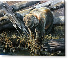 Grizzly Pond Acrylic Print by Scott Thompson
