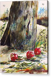 Ground Apples Acrylic Print by John Williams