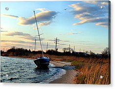 Acrylic Print featuring the photograph Grounded by Brian Hughes