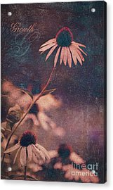 Growth  Acrylic Print by Aimelle