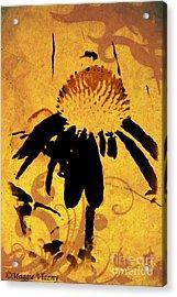 Grunge  Daisy Art Acrylic Print