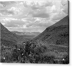 Guadalupe Mountain View Acrylic Print