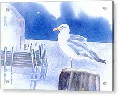 Gull Watch Acrylic Print by Joseph Gallant