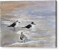 Gulls On The Beach Acrylic Print