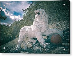 Gun Hill Lion Acrylic Print