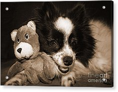 Gypsy With Billy Beaver Acrylic Print