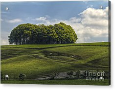 Acrylic Print featuring the photograph Hackpen Hill by Clare Bambers