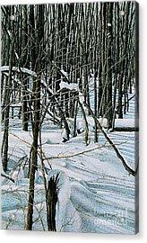 Haliburton Ontario Acrylic Print