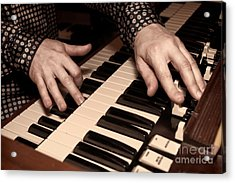 Acrylic Print featuring the photograph Hammond by Kim Wilson