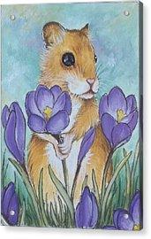 Hamster Picking Purple Crocus Acrylic Print by Debrah Nelson