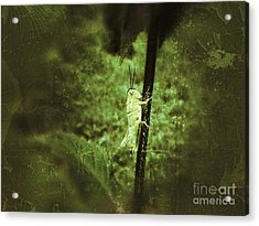 Hanging On Acrylic Print by Christy Bruna